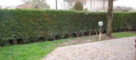 Casa singola con ampio giardino -Abano Terme